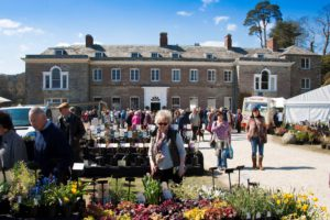 The Cornwall Spring Flower Show