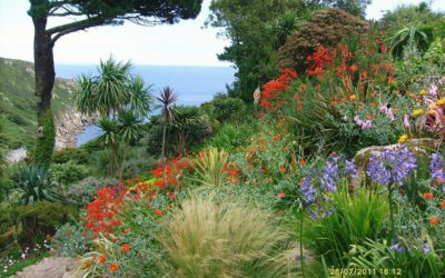 Small summer gardens with a sea view – a rare combination