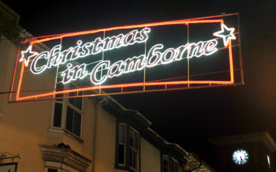 Real Christmas tree for Camborne this Christmas
